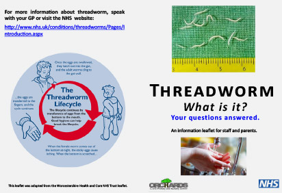 Threadworm leaflet PDF